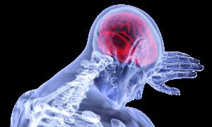 Principale-Long-Long-Life-Parkinson-vieillissement-santé-longévité