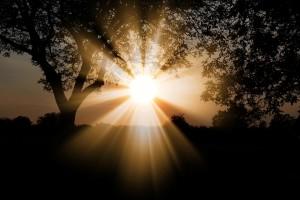 solens ljus