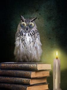 books-4279166_960_720