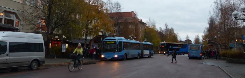 Nanna buss skola
