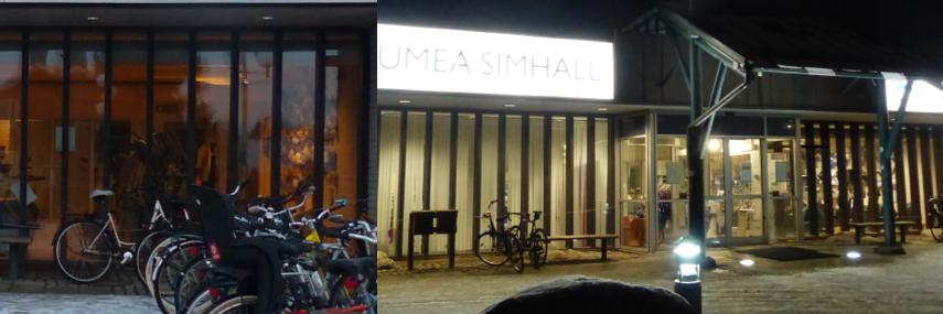 Nanna Umeå simhall konst