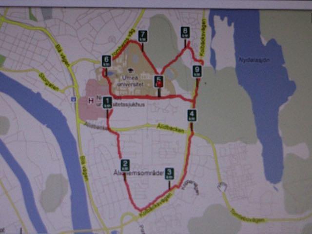Blodomloppet 2016