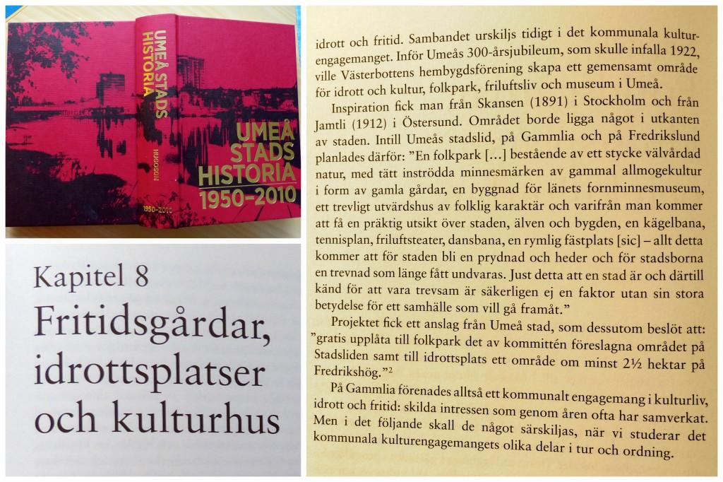 Umeå historia Gammlia b