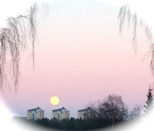 Måne Mariehem