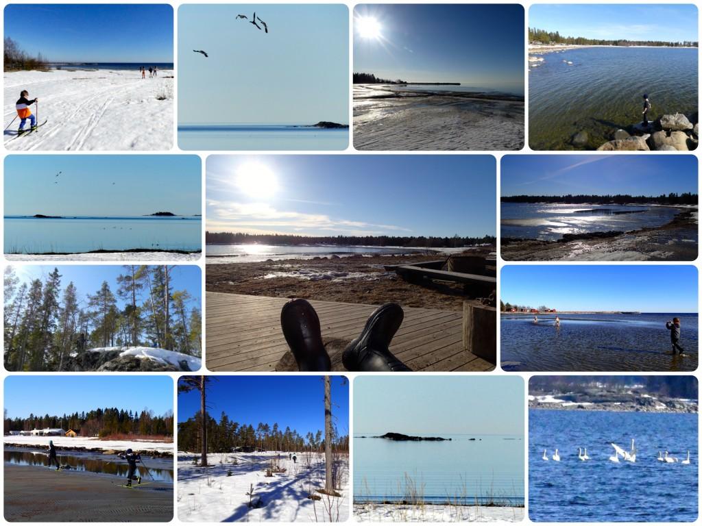Sörmjöle vinter-vår-sommar 19