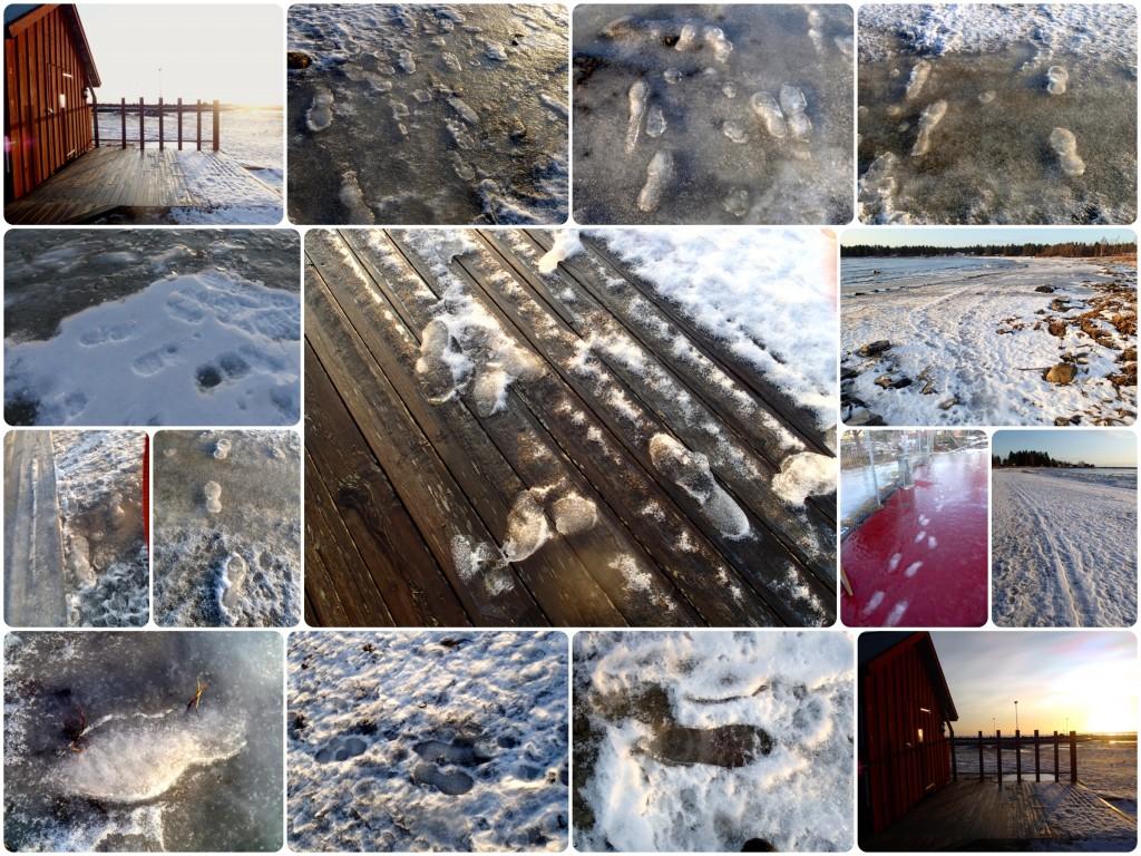 Fotspår snö is b