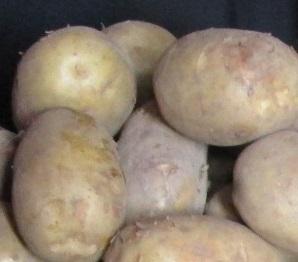 IMG_4124.jpg.potatis2