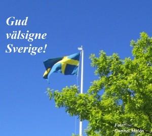 IMG_0618.jpg.grattis.jpg.flagg
