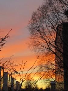IMG_3750.jpg.solnedgång