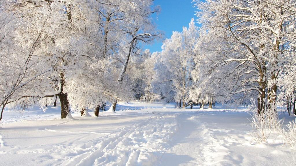 sno-vinter-trad-vag-900x1600
