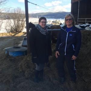Lundströms lantbruk