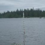 Vattnemätaren har fått göra rätt för sej i denna sommar