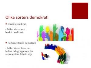 Direktdemokrati