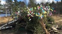 Lycksele Rotaryklubb har satt färg på majbrasan på Gammplatsen. Vill med detta tacka alla som köpte påskris till förmån för Kugghjulet och önska alla en trevlig Valborg!