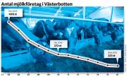 Halvering av antalet mjölkbönder i länet