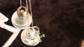 Så blir glödlampan en vas