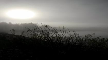 Storuman inbäddad i dimma.