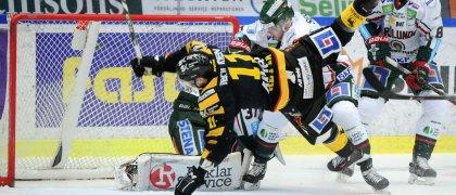 Följ Skellefteå AIK:s semifinaljakt