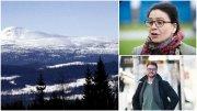 Bergner: Västerbottnisk försvarsmur vill skydda skogsägarna