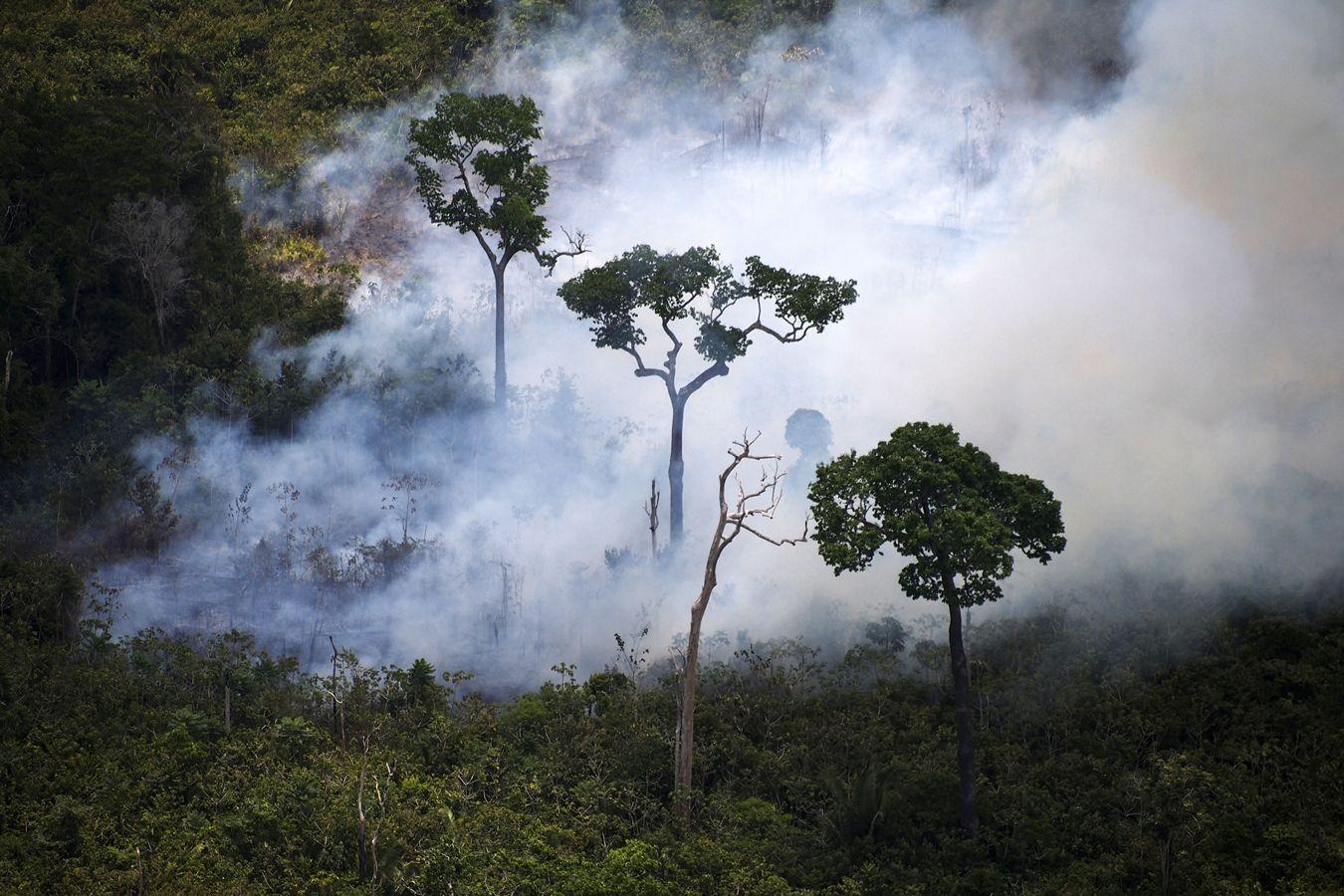 AFP ไฟป่า แอมะซอน บราซิล 2019 Wildfire Amazon Brazil