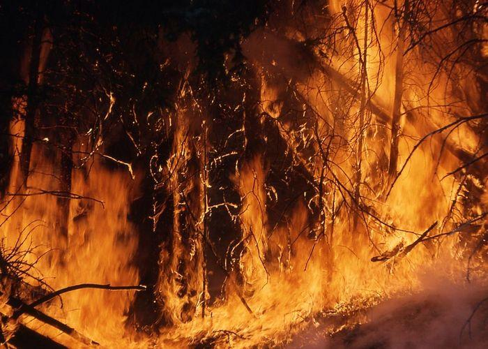 ทบ. สนับสนุน MI17 ปฏิบัติภารกิจทิ้งน้ำดับไฟป่า