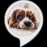 Pixel Fun image