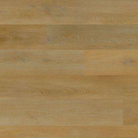 Aspecta Elemental Isocore XL 8476526X Iconic Oak Albano
