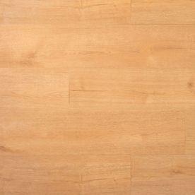 Douwes Dekker Praktische Plank Kletskop