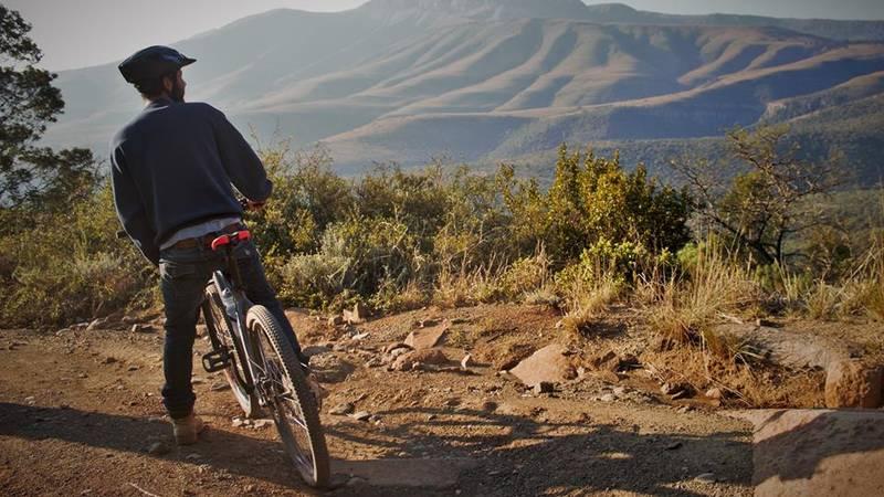 Cycle views
