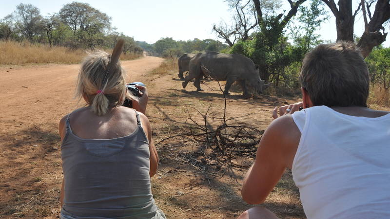 Rhino & Elephant Conservation