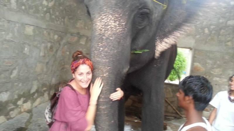 Elephant Conservation Assistant