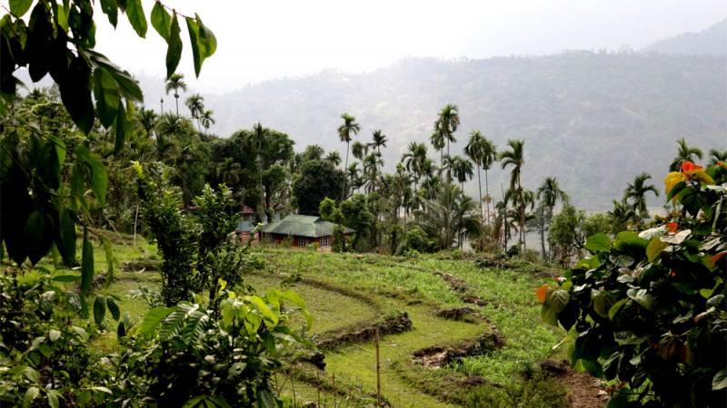 farm premises