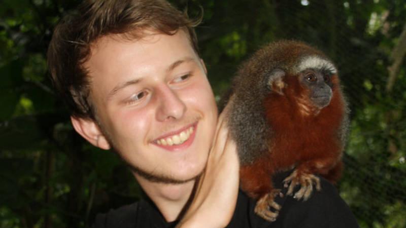 Take care of monkeys