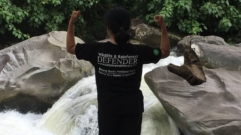 Wildlife Defenders (SRI motto)