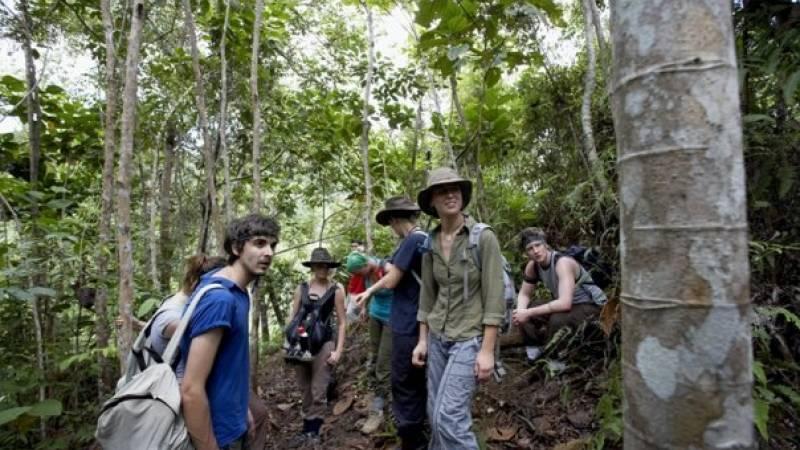 The Orangutan and Tribes Tour