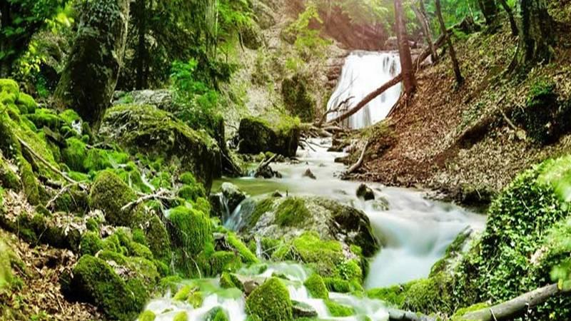 Water stream in Urambo  forest