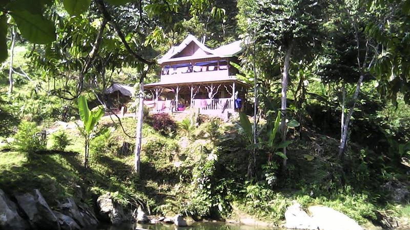 Jungle Hill accommodation