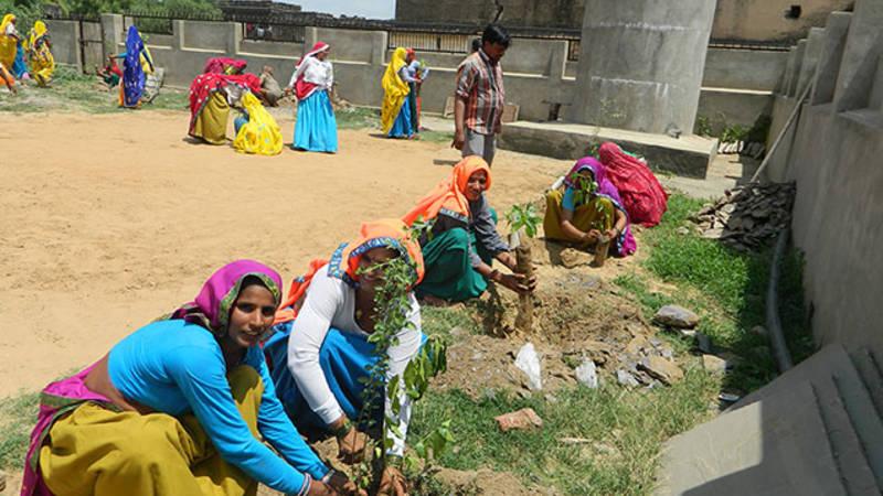 Tree planting with Humana India