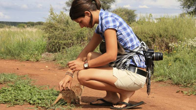 Wildlife Sanctuary Supporter