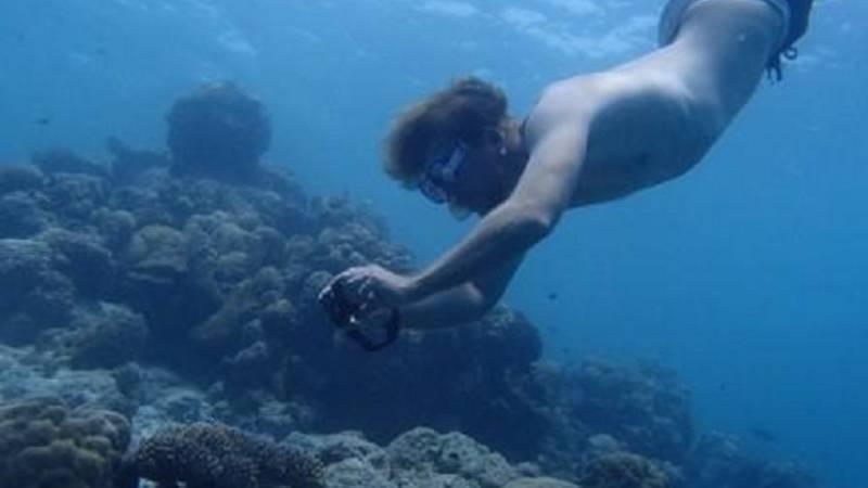 Reef Monitoring