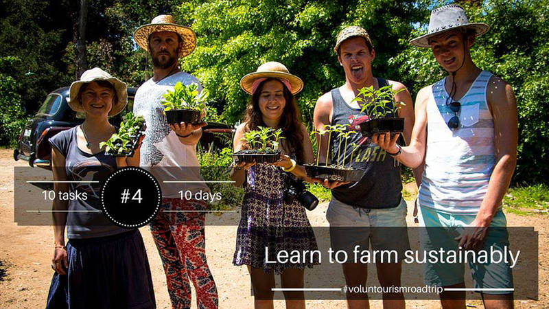 Hands-on Permaculture and sustainable farming