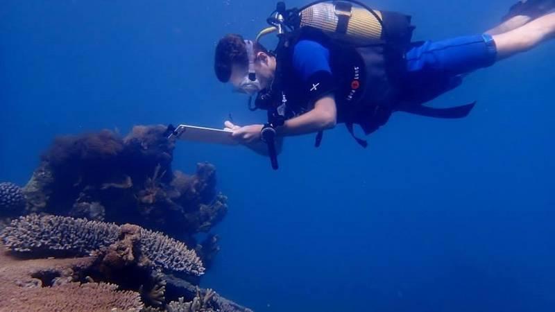 Scuba marine conservation