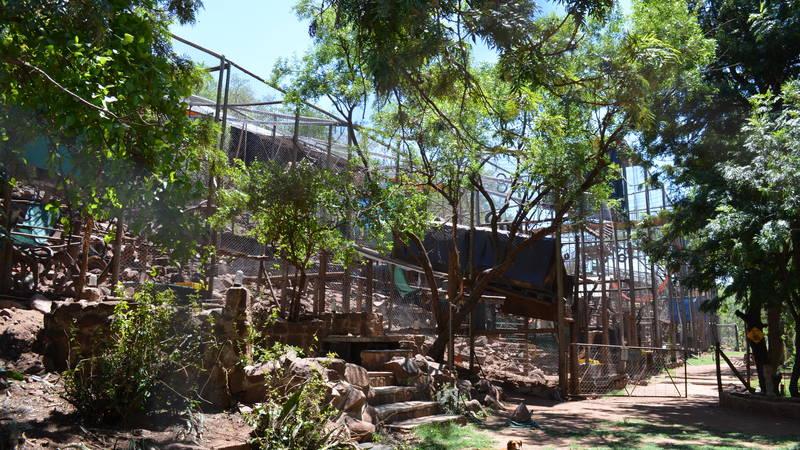 Monkey enclosures