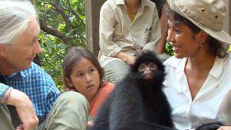 Jane Goodall at the rescue center