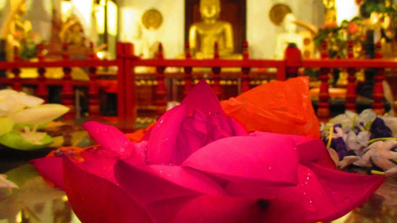 A Buddhist temple in Sri Lanka