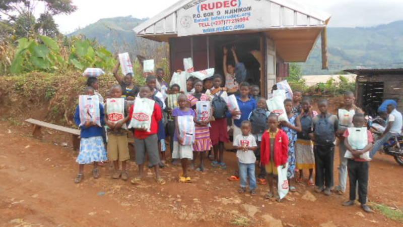 Community Health Volunteer Consultant