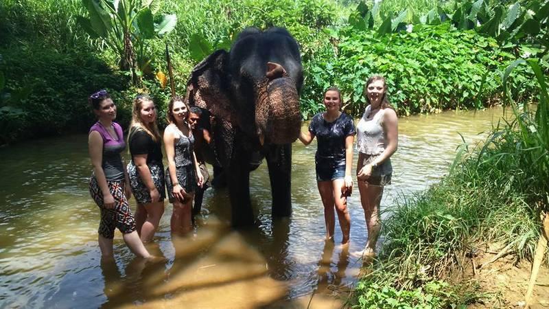 Elephant Caretaker