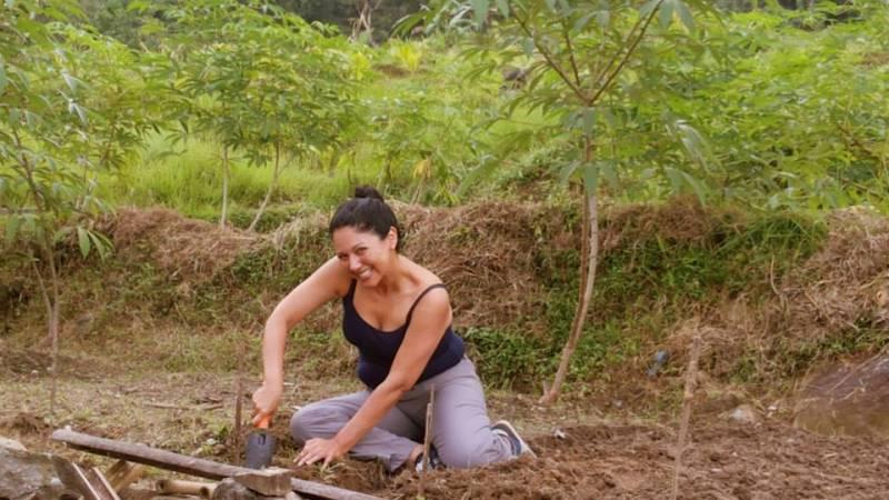 Volunteering on the land
