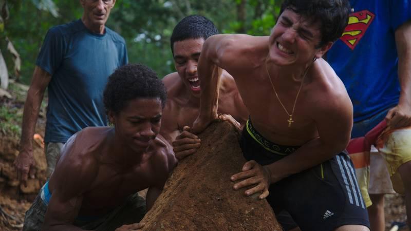 Tropical Rainforest Conservation