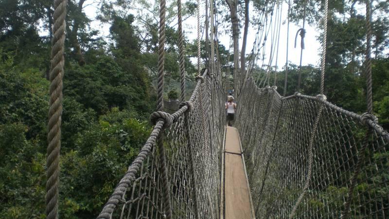 Kakum Rainforest canopy walk